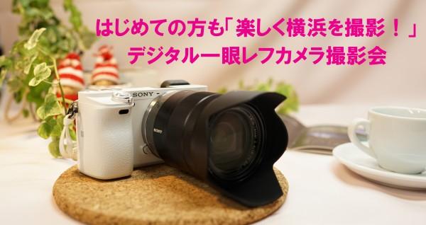 DSC01302.002
