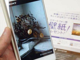 【特典】CP+2107 ソニーブースにて「鈴木知子」スマホ壁紙プレゼント!