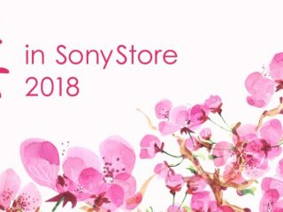 3月1日(木)からソニーストア直営店で「桜 in SonyStore 2018 」を開催!