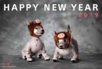 謹賀新年|2019年もよろしくお願いいたします!