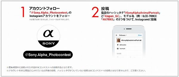 Sony αシリーズ Instagram アニマルフォトコンテスト