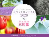 ソニー オープンフォトコン 花フォトコンテスト2020