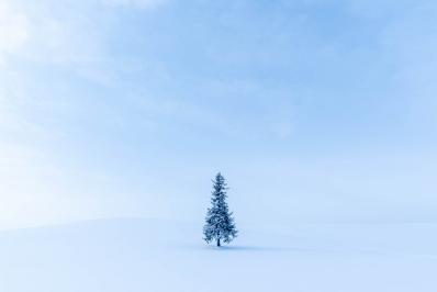 井上浩輝の写真講座 北海道撮影旅行の極上レシピ (2021年 冬編)