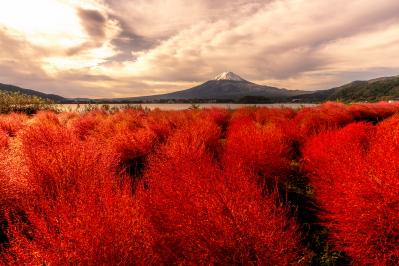 TAKASHIの写真講座 「四季折々の富士山」撮影のポイント(秋~冬編)